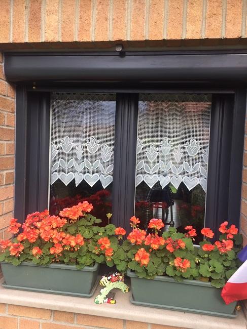 Fenêtre en PVC T70